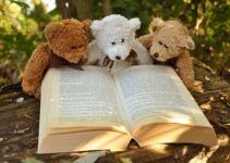 toy bears and a book