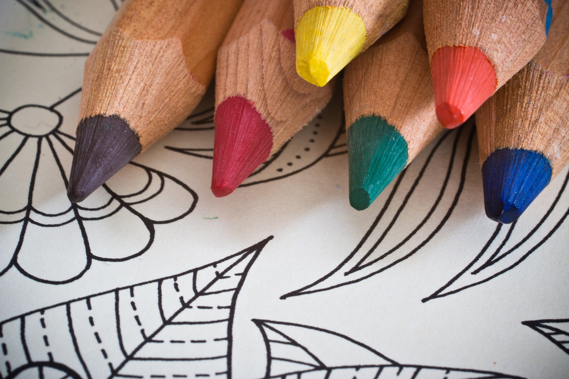 color pencils on top of an adult coloring book