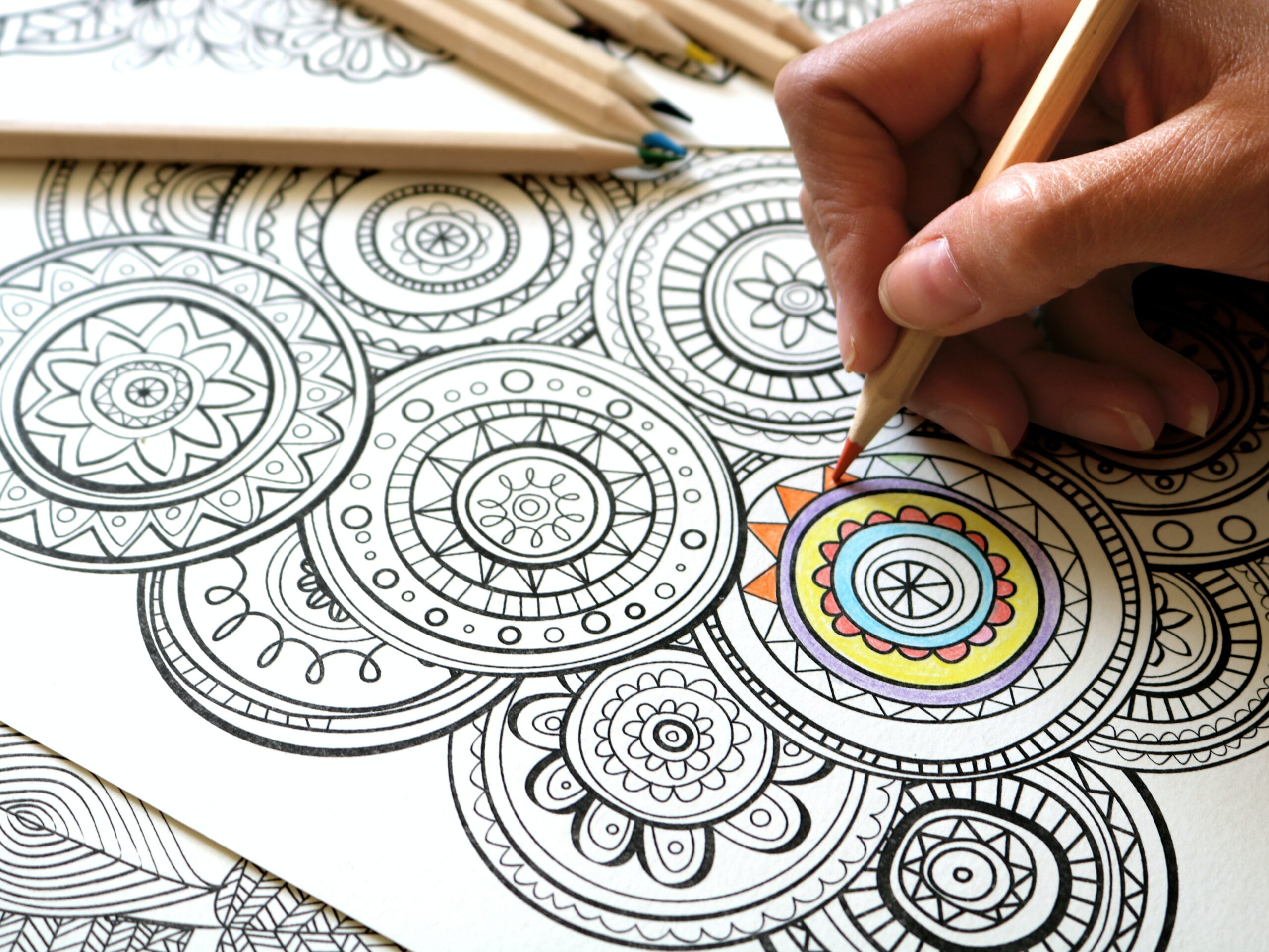 a teacher coloring an adult coloring book