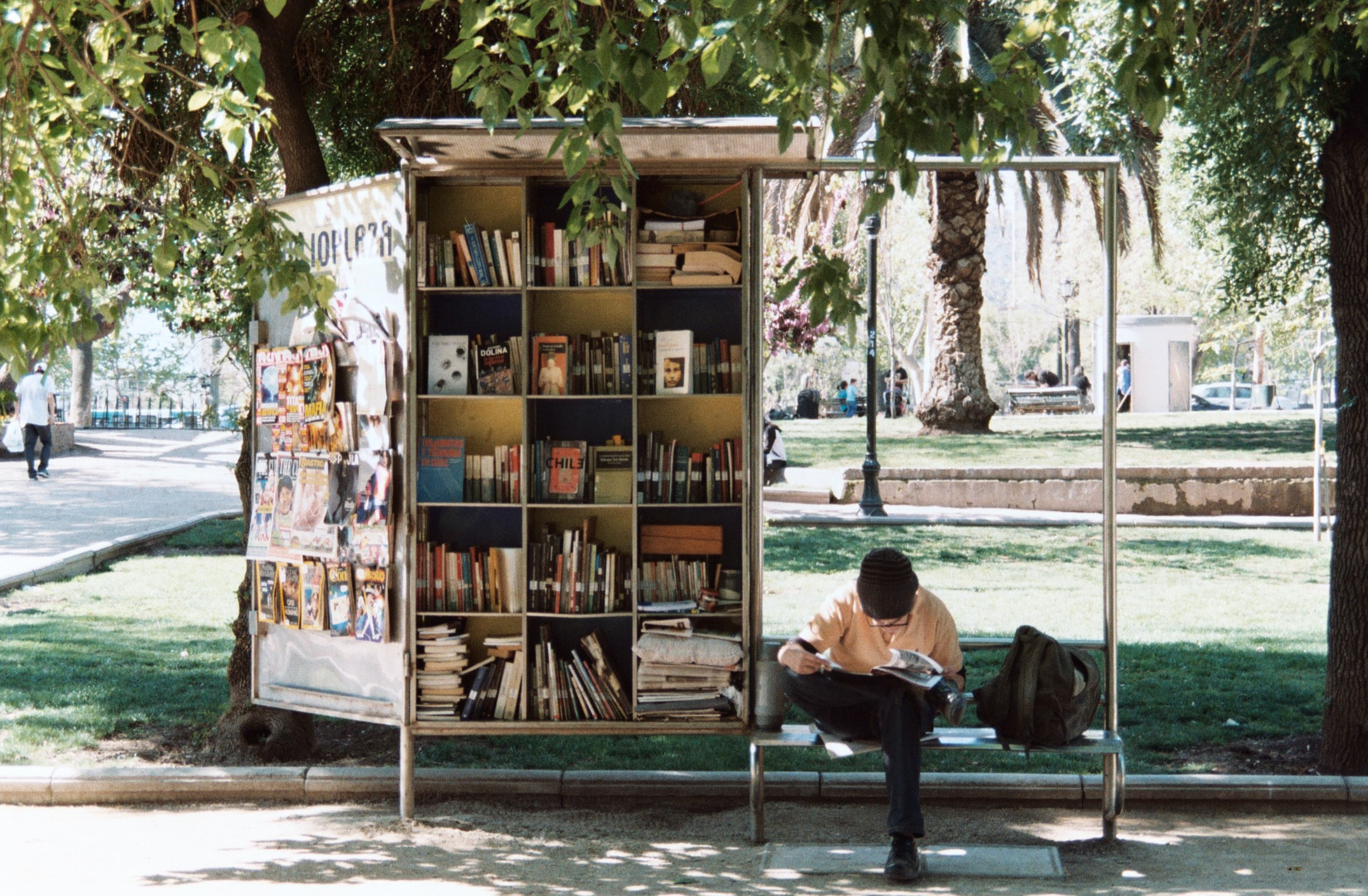 a mini library in a park